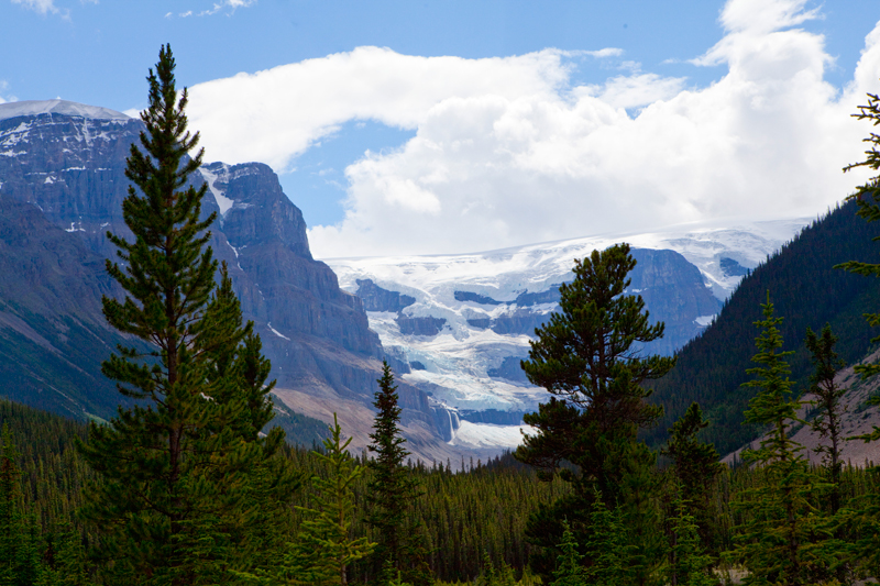 icefields-parkway-banff